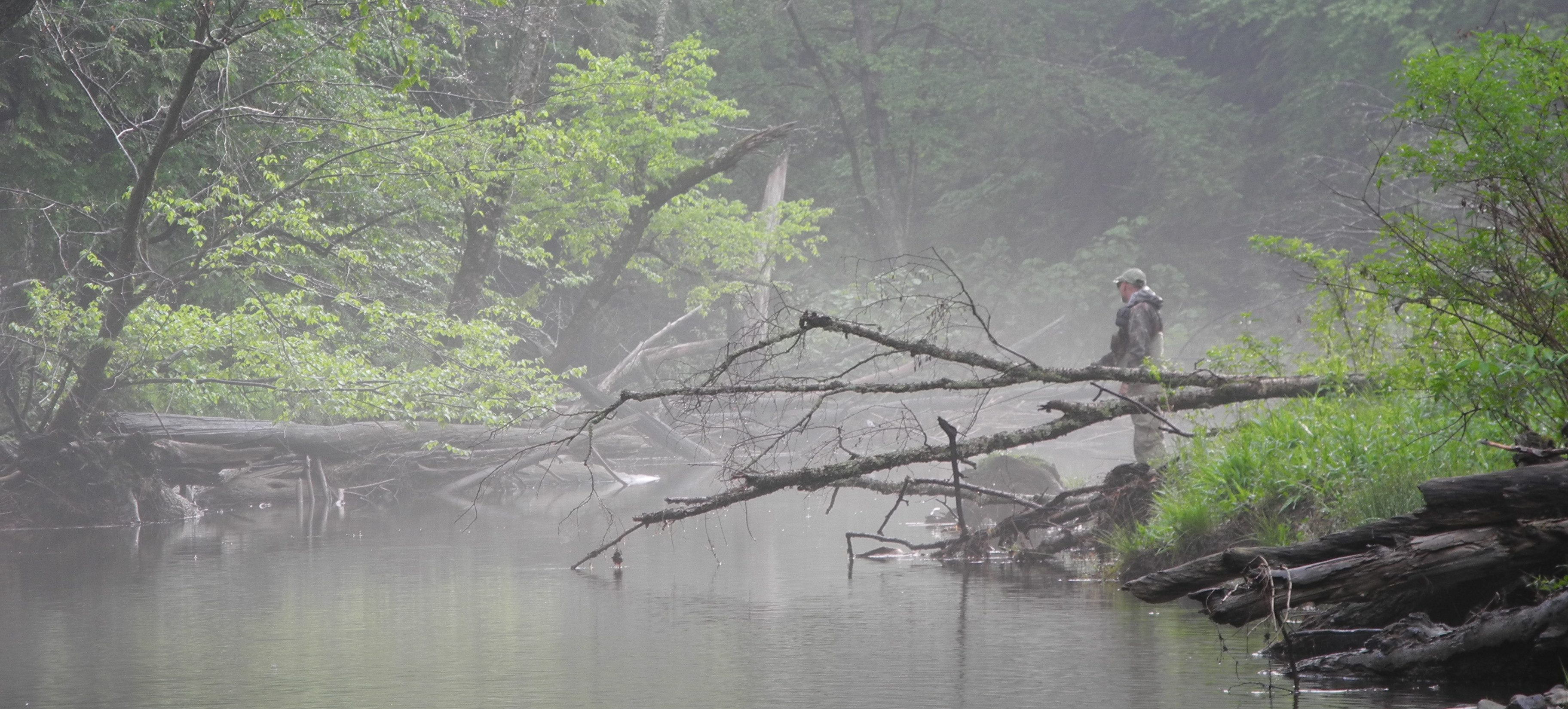 Man fishing creek in the fog