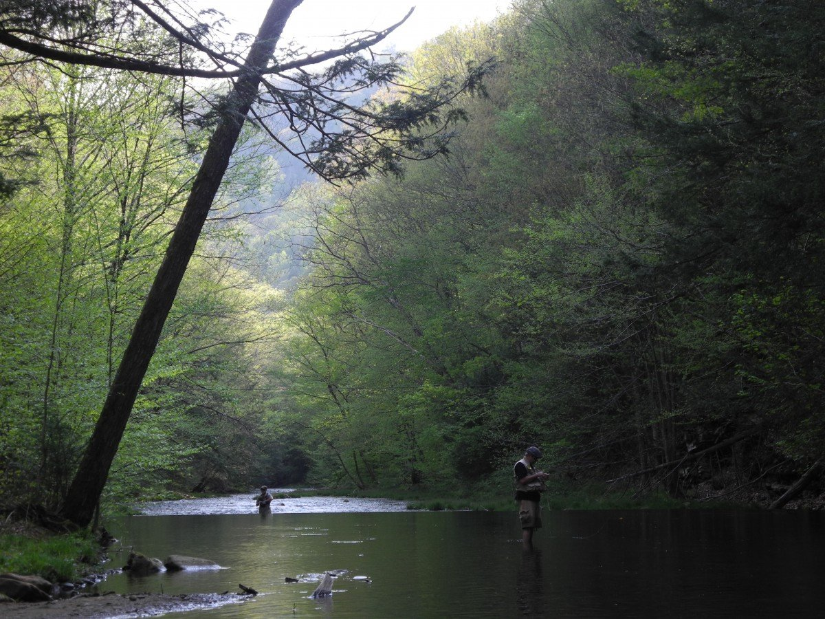 How Difficult Is Fly Fishing To Learn?