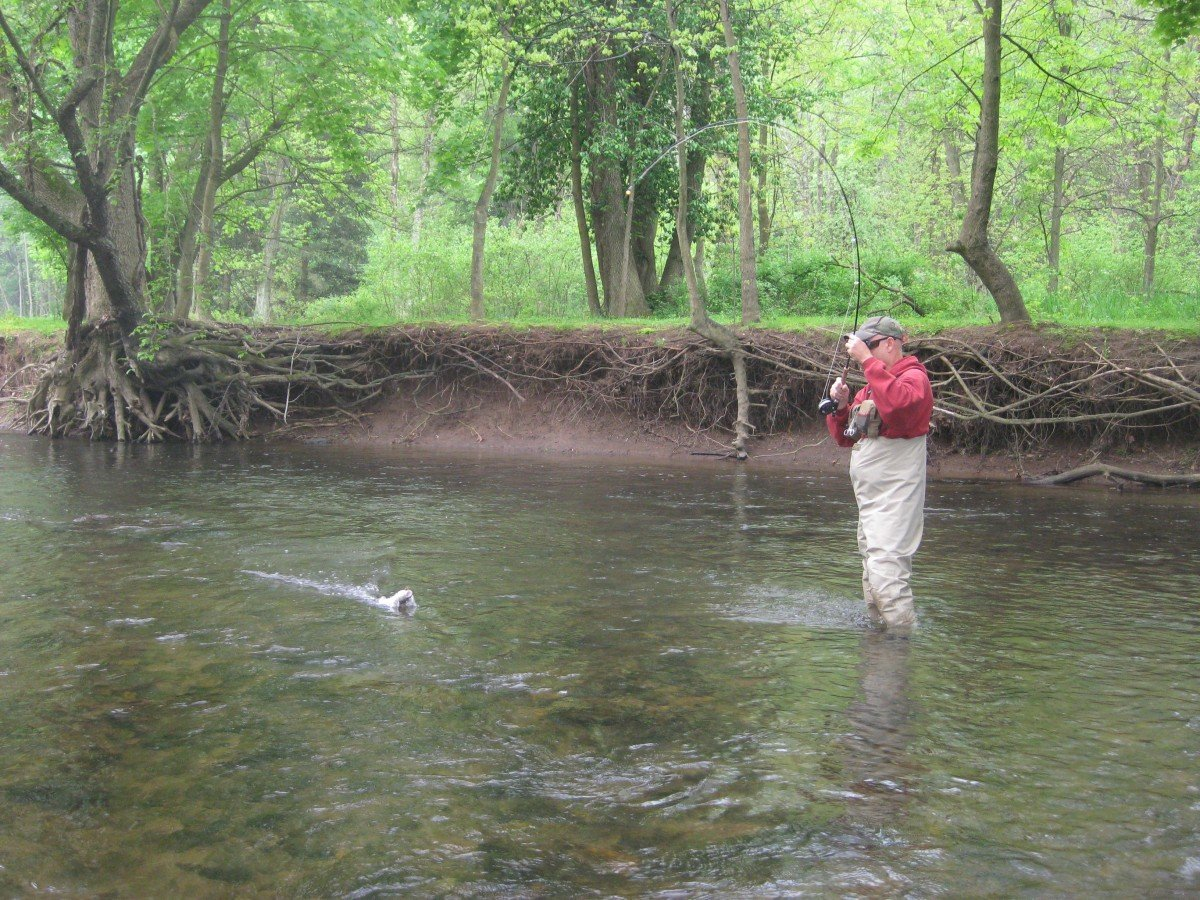 What Are The Basic Skills for Nymph Fishing Success?