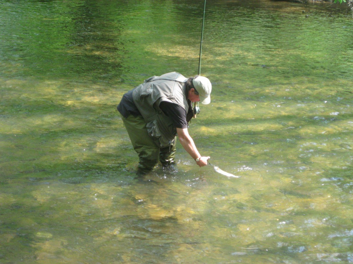 How You Should Handle and Release Trout